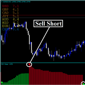 Forex Stinger Strategy